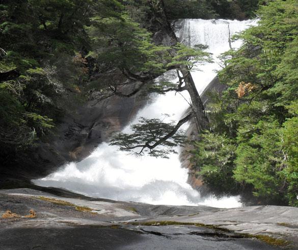 Actividades y excursiones lacustres en Brazo Tristeza