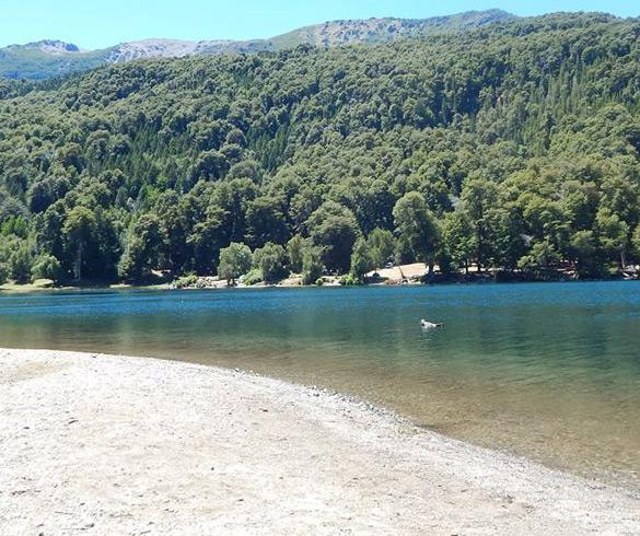 Actividades en Lago Steffen