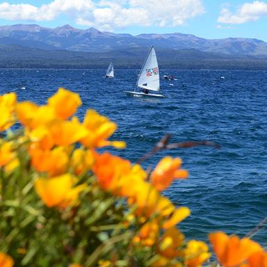 Primavera em Bariloche