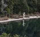 Descubra o lado sudeste de Bariloche